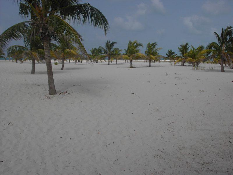 cuba spiagge migliori cayo largo