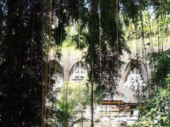 quali templi vedere a Bali giungla