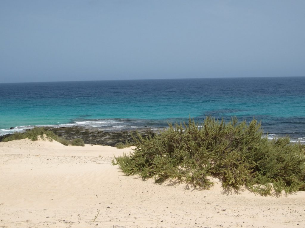 isole canarie fuerteventura